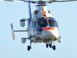 mild lifeさんが、伊丹空港で撮影したオールニッポンヘリコプター AS365N2 Dauphin 2の航空フォト(飛行機 写真・画像)