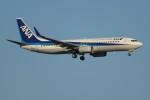 FY1030さんが、新千歳空港で撮影した全日空 737-881の航空フォト(写真)