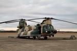344さんが、茨城空港で撮影した航空自衛隊 CH-47J/LRの航空フォト(飛行機 写真・画像)