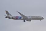 厦龙さんが、成田国際空港で撮影したエティハド航空 787-9の航空フォト(写真)