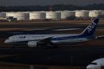 akinarin1989さんが、成田国際空港で撮影した全日空 787-8 Dreamlinerの航空フォト(写真)
