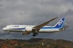 だいまる。さんが、岡山空港で撮影した全日空 787-8 Dreamlinerの航空フォト(飛行機 写真・画像)