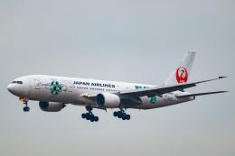 こぐともさんが、福岡空港で撮影した日本航空 777-246の航空フォト(飛行機 写真・画像)