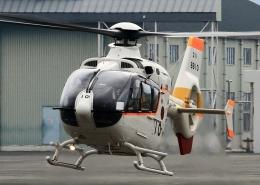 ビッグジョンソンさんが、高遊原分屯地で撮影した海上自衛隊 TH-135の航空フォト(飛行機 写真・画像)
