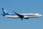 よっしぃさんが、福岡空港で撮影した全日空 737-8ALの航空フォト(飛行機 写真・画像)