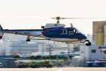 NCT310さんが、東京ヘリポートで撮影したアカギヘリコプター AS350B1 Ecureuilの航空フォト(飛行機 写真・画像)