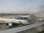 みのフォトグラファさんが、福岡空港で撮影した日本航空 777-246の航空フォト(飛行機 写真・画像)