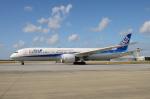 EC5Wさんが、那覇空港で撮影した全日空 787-9の航空フォト(写真)