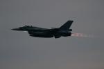 GNPさんが、築城基地で撮影した航空自衛隊 F-2Aの航空フォト(飛行機 写真・画像)