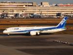 FT51ANさんが、羽田空港で撮影した全日空 787-9の航空フォト(飛行機 写真・画像)