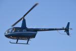 チャーリーマイクさんが、東京ヘリポートで撮影した日本法人所有 R66 Turbineの航空フォト(飛行機 写真・画像)