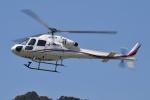 ブルーさんさんが、静岡ヘリポートで撮影した静岡エアコミュータ AS355N Ecureuil 2の航空フォト(写真)