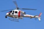 ブルーさんさんが、静岡ヘリポートで撮影した東邦航空 AS355Nの航空フォト(写真)