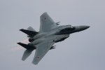 Kanarinaさんが、新田原基地で撮影した航空自衛隊 F-15DJ Eagleの航空フォト(写真)