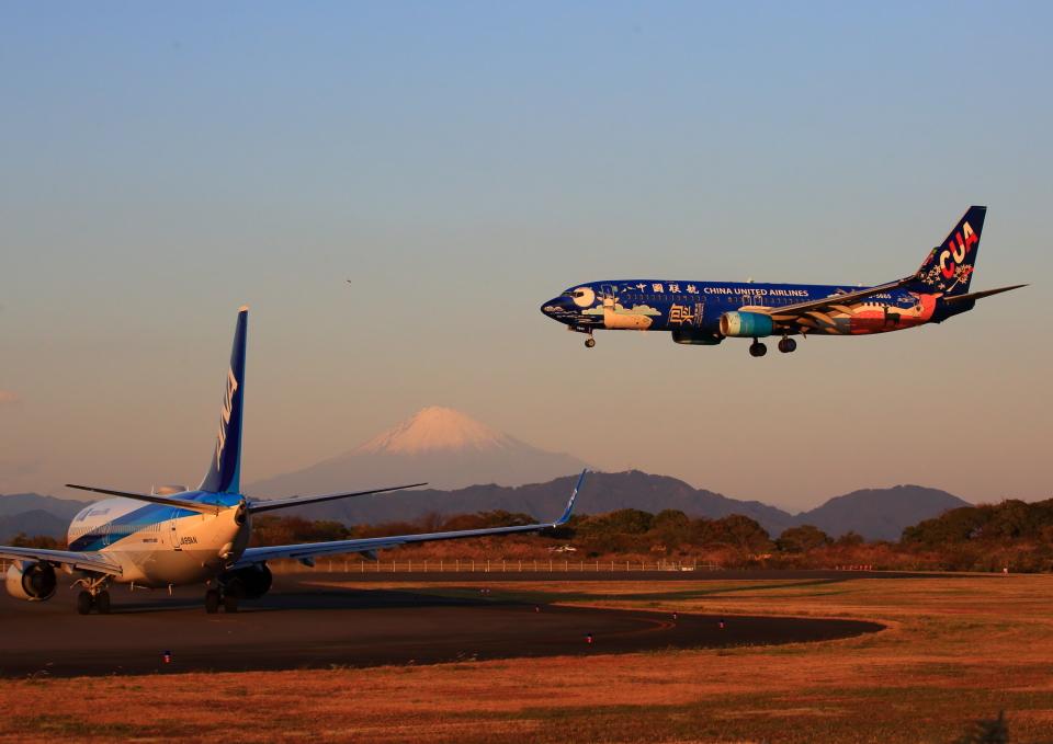 タミーさんの中国聯合航空 Boeing 737-800 (B-5665) 航空フォト