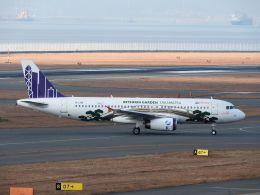 White Pelicanさんが、中部国際空港で撮影した香港エクスプレス A320-232の航空フォト(飛行機 写真・画像)