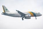 Ariesさんが、関西国際空港で撮影したブラジル空軍 A319-133X CJの航空フォト(写真)