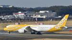 パンダさんが、成田国際空港で撮影したスクート 787-9の航空フォト(飛行機 写真・画像)