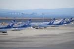 TG36Aさんが、羽田空港で撮影した全日空 787-9の航空フォト(写真)