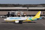 KAZFLYERさんが、成田国際空港で撮影したセブパシフィック航空 A320-214の航空フォト(写真)