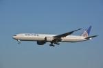 アルビレオさんが、成田国際空港で撮影したユナイテッド航空 777-322/ERの航空フォト(写真)