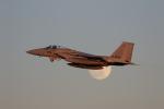 chikinさんが、那覇空港で撮影した航空自衛隊 F-15J Eagleの航空フォト(写真)