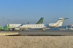 KAZKAZさんが、キング・ファハド国際空港で撮影したアメリカ企業所有 Gulfstream G650ER (G-VI)の航空フォト(写真)
