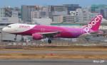 RINA-281さんが、福岡空港で撮影したピーチ A320-214の航空フォト(飛行機 写真・画像)