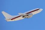 masa707さんが、マッカラン国際空港で撮影したEG&G 737-66Nの航空フォト(飛行機 写真・画像)