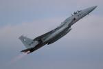totsu19さんが、新田原基地で撮影した航空自衛隊 F-15J Eagleの航空フォト(飛行機 写真・画像)