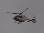FT51ANさんが、神戸空港で撮影したエアバス・ヘリコプターズ・ジャパン EC135T3の航空フォト(飛行機 写真・画像)