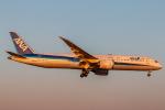 RUNWAY23.TADAさんが、成田国際空港で撮影した全日空 787-9の航空フォト(飛行機 写真・画像)