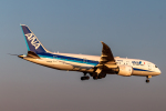 RUNWAY23.TADAさんが、成田国際空港で撮影した全日空 787-8 Dreamlinerの航空フォト(飛行機 写真・画像)