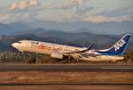 mojioさんが、静岡空港で撮影した全日空 737-881の航空フォト(飛行機 写真・画像)