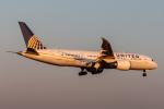 RUNWAY23.TADAさんが、成田国際空港で撮影したユナイテッド航空 787-8 Dreamlinerの航空フォト(飛行機 写真・画像)