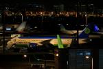 しかばねさんが、羽田空港で撮影したウズベキスタン航空 787-8 Dreamlinerの航空フォト(飛行機 写真・画像)