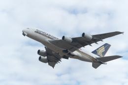 サイパンだ!さんが、成田国際空港で撮影したシンガポール航空 A380-841の航空フォト(飛行機 写真・画像)