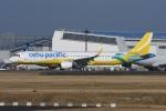 tassさんが、成田国際空港で撮影したセブパシフィック航空 A321-211の航空フォト(飛行機 写真・画像)