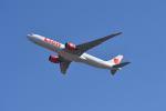 yotaさんが、成田国際空港で撮影したタイ・ライオン・エア A330-941の航空フォト(飛行機 写真・画像)