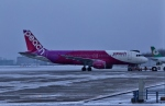 Airway-japanさんが、函館空港で撮影したピーチ A320-214の航空フォト(飛行機 写真・画像)
