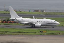 ショウさんが、羽田空港で撮影したロイヤル・ジェット 737-77W BBJの航空フォト(飛行機 写真・画像)