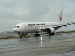 南国の防人さんが、那覇空港で撮影した日本航空 777-289の航空フォト(飛行機 写真・画像)