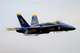 AkiChup0nさんが、ペンサコーラ海軍航空ステーションで撮影したアメリカ海軍 F/A-18C Hornetの航空フォト(飛行機 写真・画像)