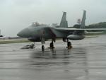南国の防人さんが、那覇空港で撮影した航空自衛隊 F-15J Eagleの航空フォト(飛行機 写真・画像)