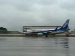 南国の防人さんが、那覇空港で撮影した全日空 737-781の航空フォト(飛行機 写真・画像)