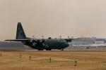 バイクオヤジさんが、厚木飛行場で撮影した航空自衛隊 C-130H Herculesの航空フォト(飛行機 写真・画像)