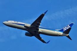 ちっとろむさんが、新千歳空港で撮影した全日空 737-881の航空フォト(飛行機 写真・画像)