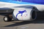 kumagorouさんが、仙台空港で撮影したANAウイングス 737-54Kの航空フォト(飛行機 写真・画像)