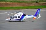 hidetsuguさんが、札幌飛行場で撮影したオールニッポンヘリコプター AS365N3 Dauphin 2の航空フォト(飛行機 写真・画像)