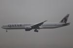 Shibataさんが、成田国際空港で撮影したカタール航空 777-3DZ/ERの航空フォト(飛行機 写真・画像)